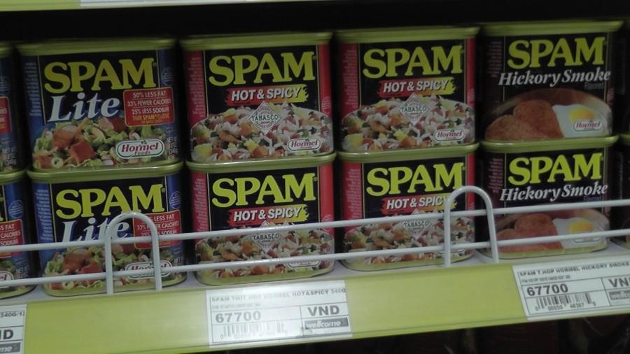 вот что такое SPAM - 2