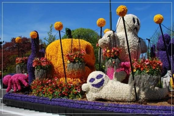 Парад цветов в Голландии!!