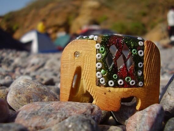 Vasya the Elephant