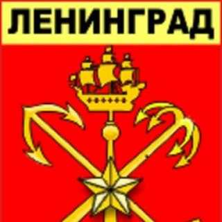 PetrDemidovich avatar
