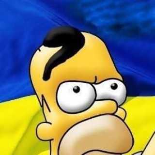 xtimor avatar