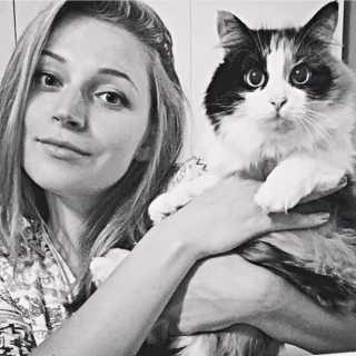 KaterinaChekhomova avatar