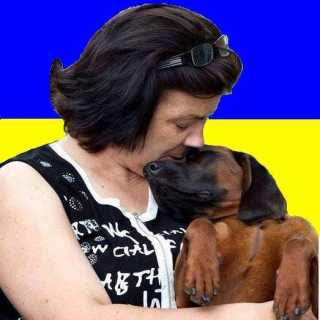 NataliyaMetayogg avatar