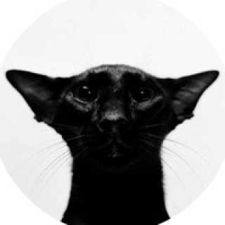 6ba84e4 avatar
