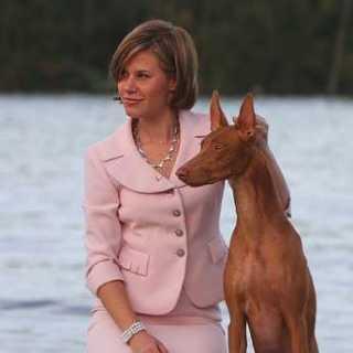 MariaEvteeva avatar
