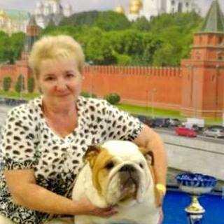 AllaKuptsova avatar