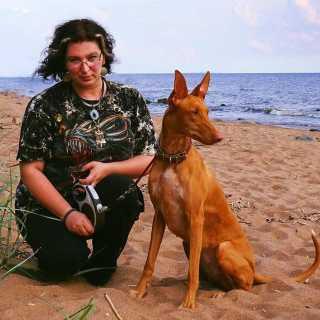 IrinaAbrosimova avatar