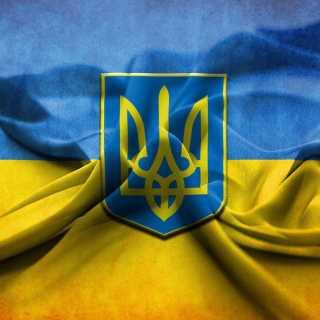 KoshiyDmitriy avatar