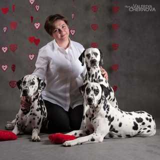 TatianaTarasenko_4895a avatar