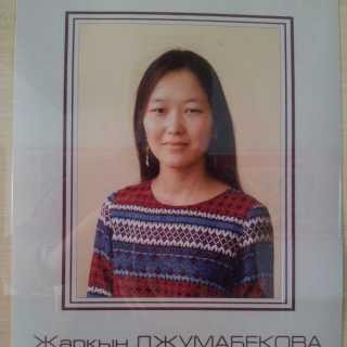 ZharkynDzhumabekova avatar