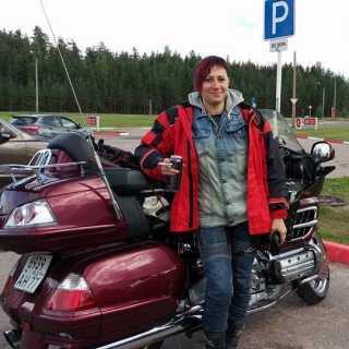 SvetaTereshchenko avatar