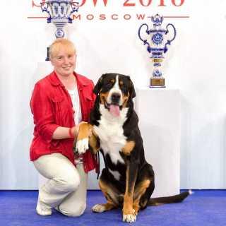 IrenaVasilenko avatar