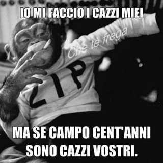 PippoJigenCalippo avatar