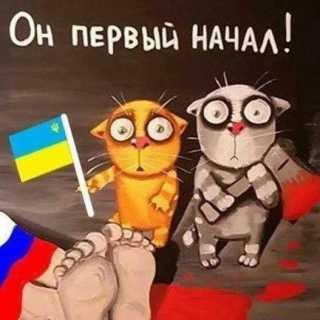 AlekseyRud avatar
