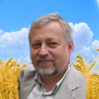 BorisRoschina avatar
