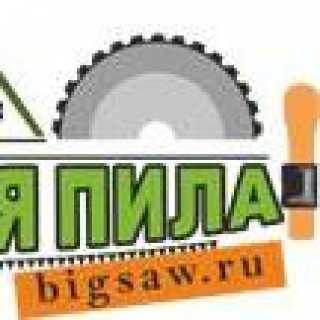 BolshayaPilaDlyaSada avatar