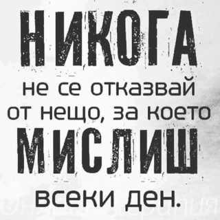 VeselinParvanov avatar