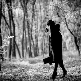 AnnaKorshunova avatar