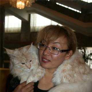 MairaAkchulakova avatar