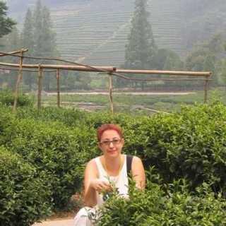 AllaZhavoronkova avatar