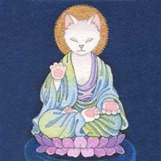 tigra-uki avatar