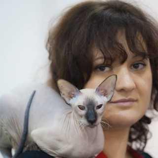 SvetlanaGilenko avatar