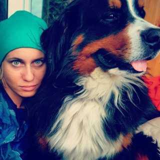 AnastasiyaDolgova avatar