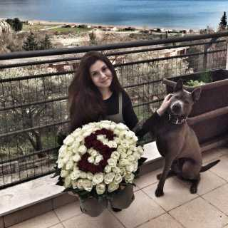AlexandraKrasnogir avatar