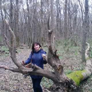 ElenaNovitskaya_08c00 avatar