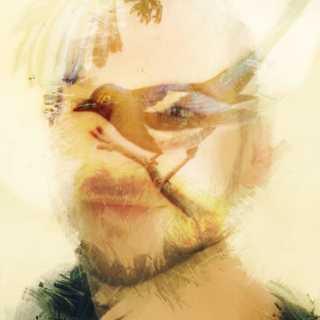 DaveBurns avatar
