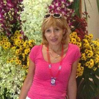 ElenaShevcova_f8b88 avatar