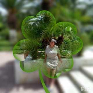 id3611498 avatar
