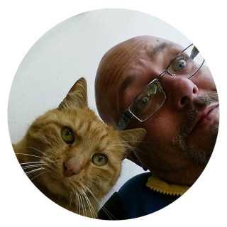 DmitryBalod avatar
