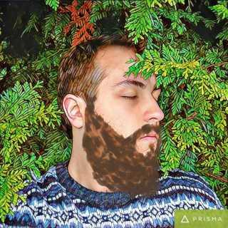DmitryBelov_17583 avatar