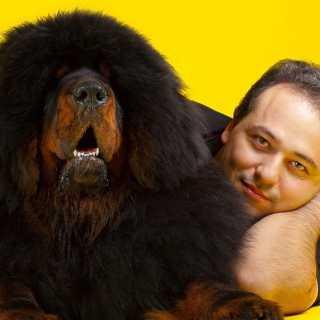 SergeyBabayan avatar