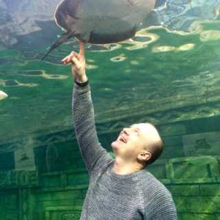 AndreySivinyuk avatar