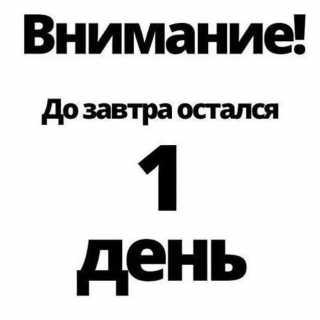 ElenaSavinskaya avatar