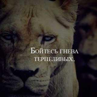 VladAntonov avatar