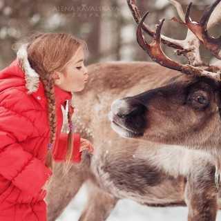 SvetlanaUlanova avatar