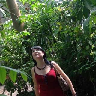 OlgaErokhina avatar