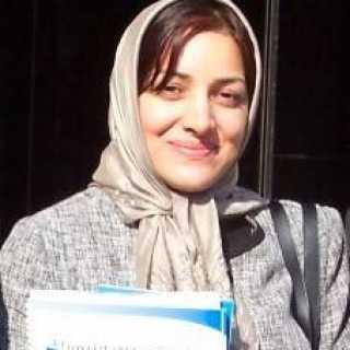 ShivaMortazavi avatar