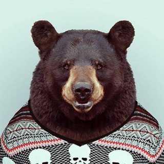 DmitriyMakhteev avatar