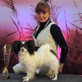 OlgaSklyarova avatar