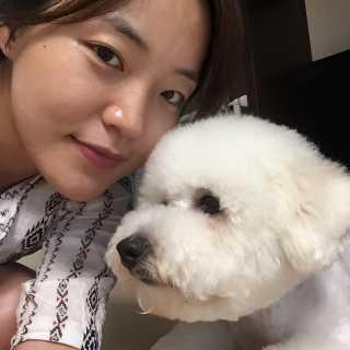 JaeyeonShim avatar