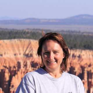 OlgaLinkova avatar