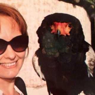 OlgaMalina avatar
