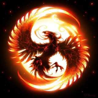 Alexander_2e6b1 avatar