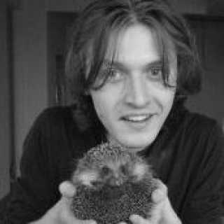DenisZaykov avatar