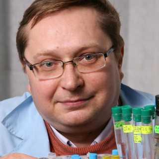 VasilyPopov avatar