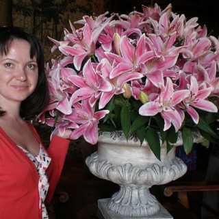 SvetlanaKuznetsova_6d6ce avatar